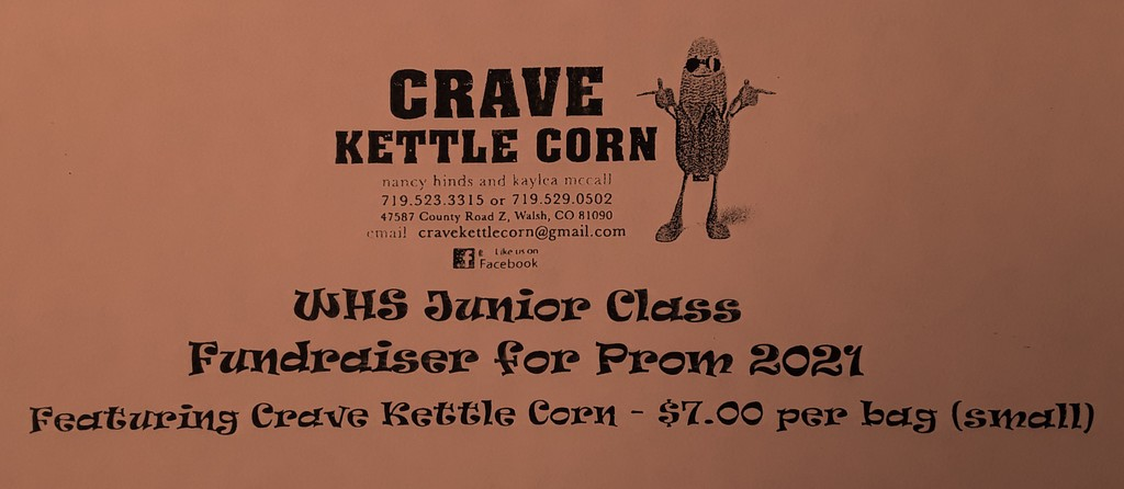 JR Fundraiser Fall 2020